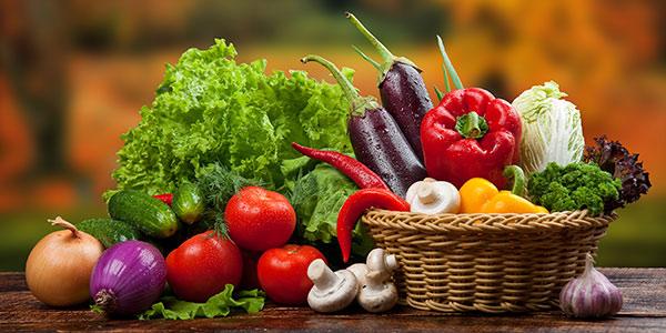 Productos químicos para alimentación